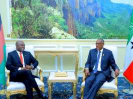 Somaliland-Malawi Agree To Enhance Bilateral Relations