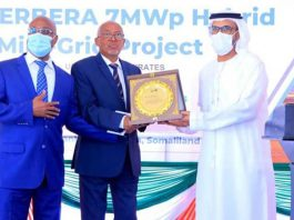 Emirates Unveils Low-Cost Solar Power In Berbera